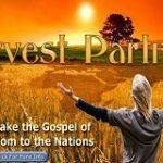 harvest partners - Copy